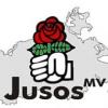 Jusos fordern Einführung der Kennzeichnungspflicht auch in MV